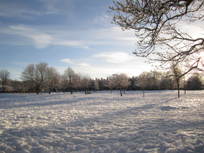 The Meadows in the snow, Edinburgh, December 2010